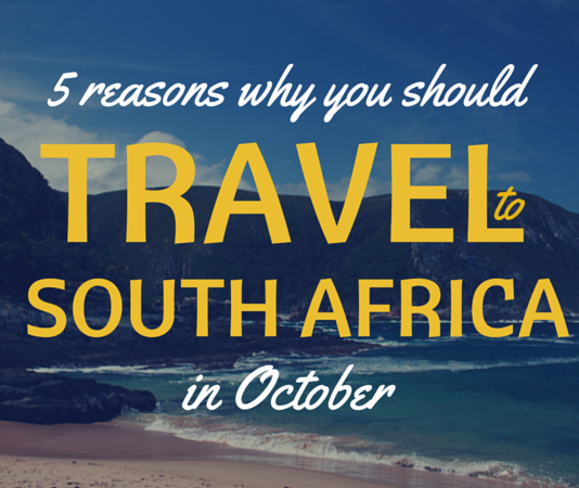 5 reasons why you should travel to South Africa in October