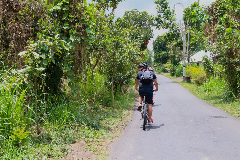 Cycling tour, Bali