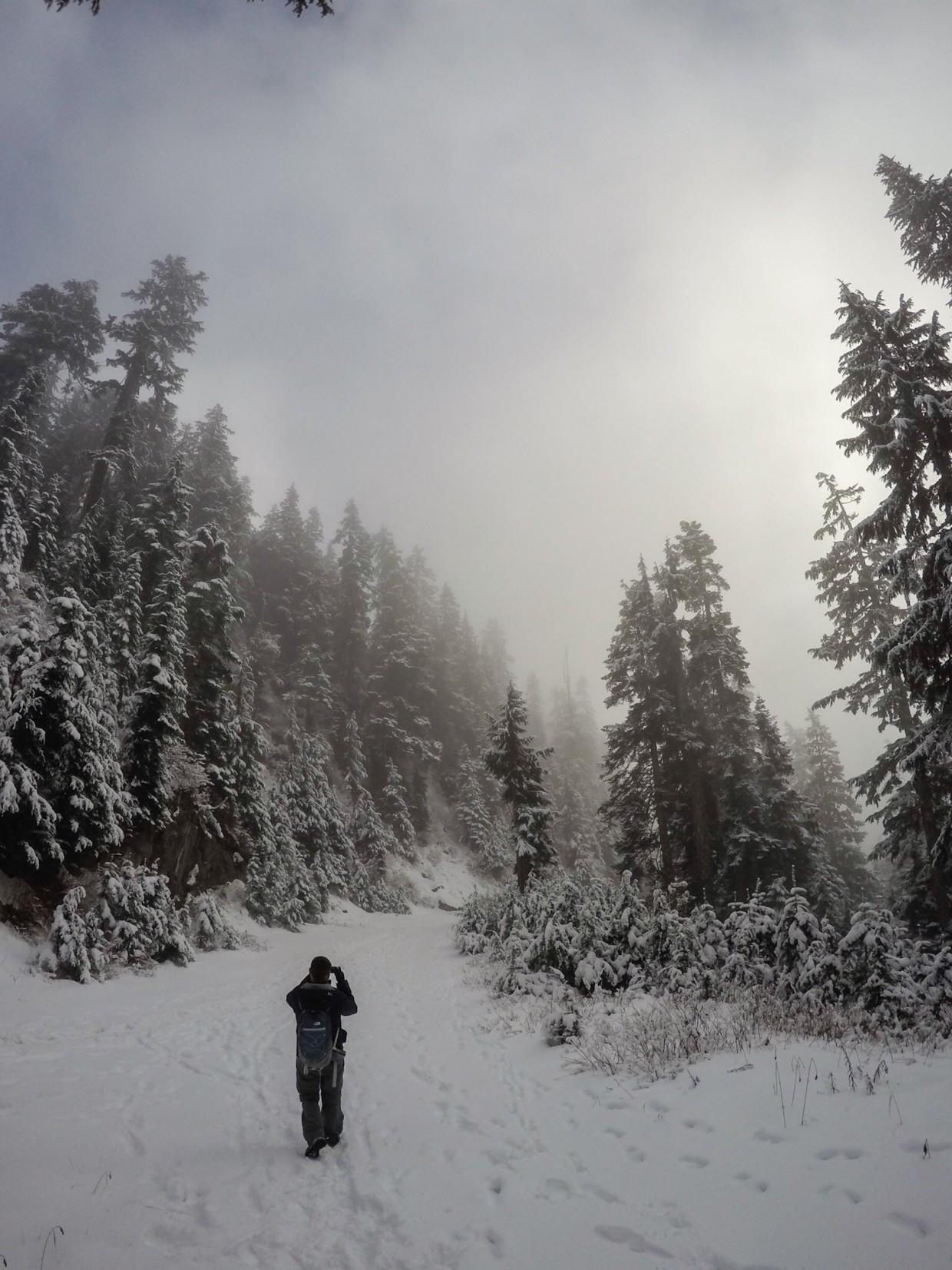 More fog on Grouse Mountain