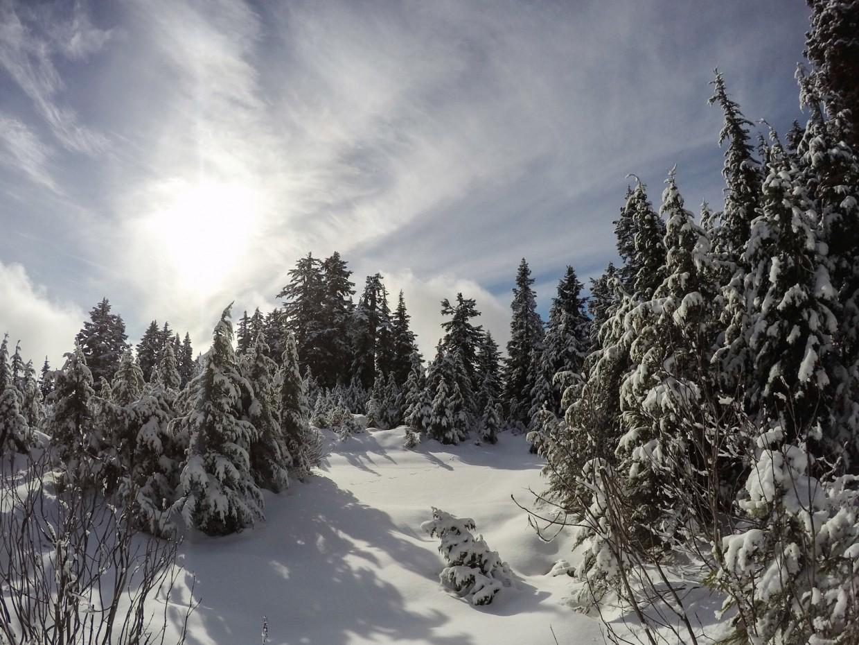 Winter Wonderland, Vancouver