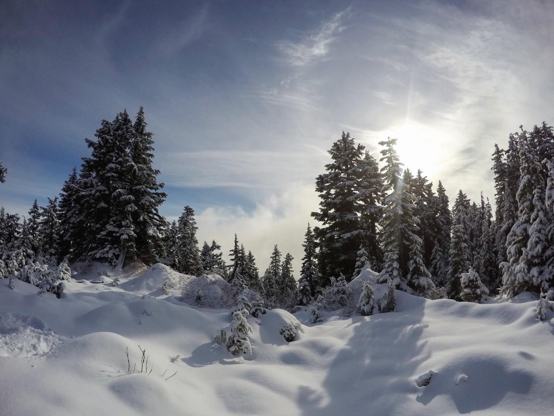 Snowy landscape Grouse Mountain
