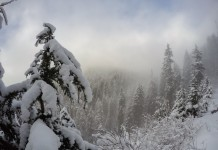 Grouse Mountain Winter Wonderland, Canada