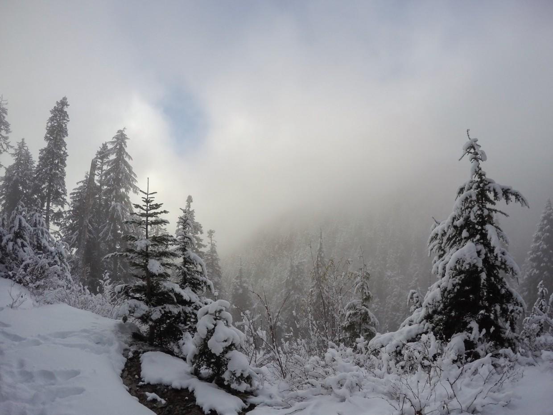 Fog on Grouse Mountain