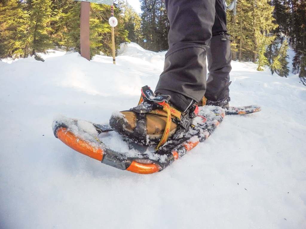 Snowshoes Vancouver Mount Seymour snowshoeing