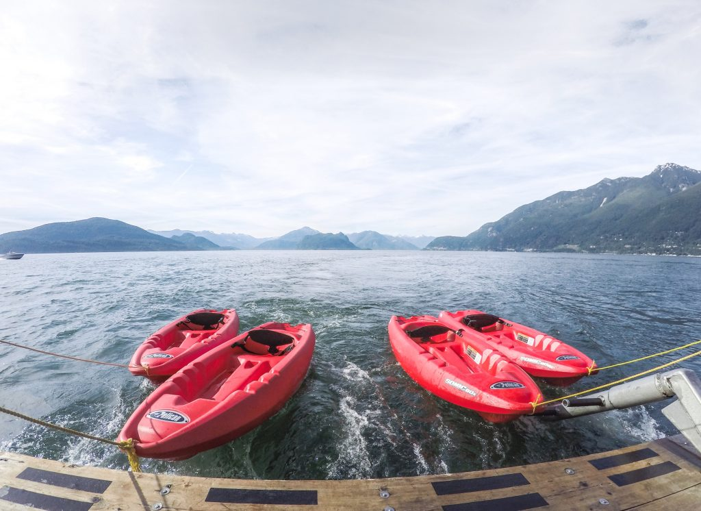Swimming and kayaking with seals top 7 outdoor activities in Vancouver