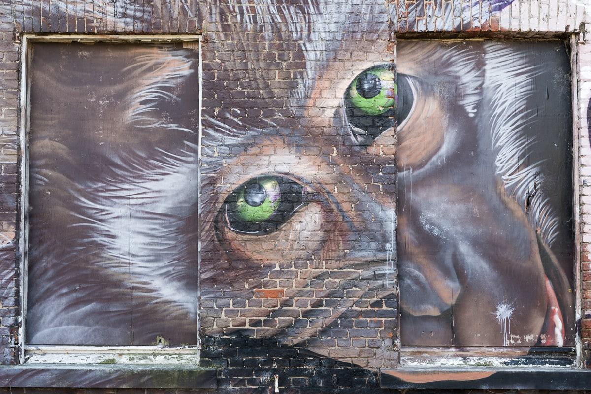 Street art Doel Belgium