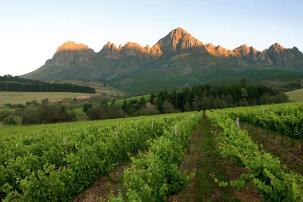 Lourensford wine farm near Cape Town South Africa