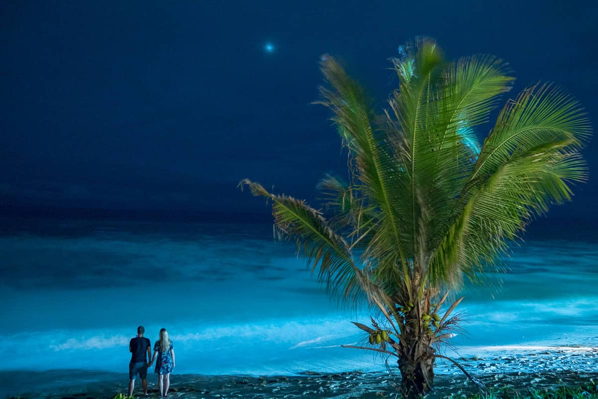 Night in Fiji